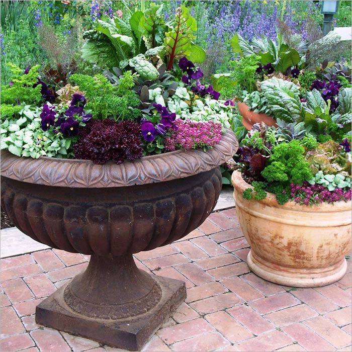40 Beautiful Container Garden Combination 85