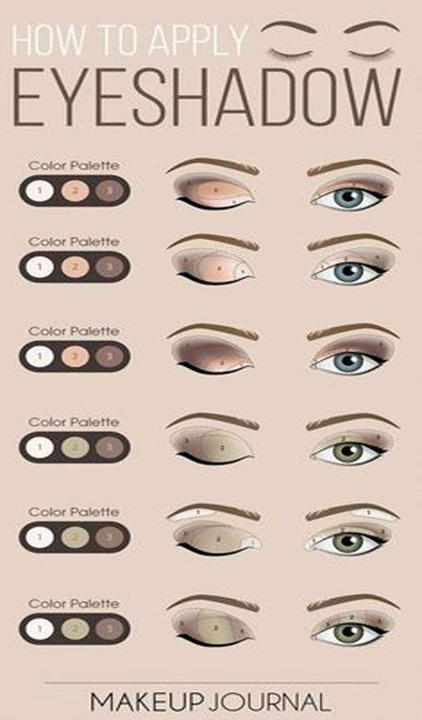 How to apply eye-shadow -   14 makeup For Beginners eyebrows ideas