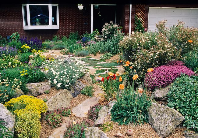 A beautiful xeriscape garden by john smithin golde for Garden design xeriscape
