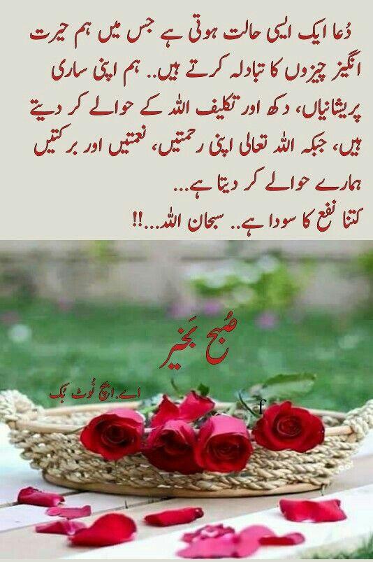 السلام عليكم ورحمة الله وبركاته ص بح ب خیر اے ایچ ن وٹ ب ک Good Morning Greetings Good Morning Flowers Good Morning Messages