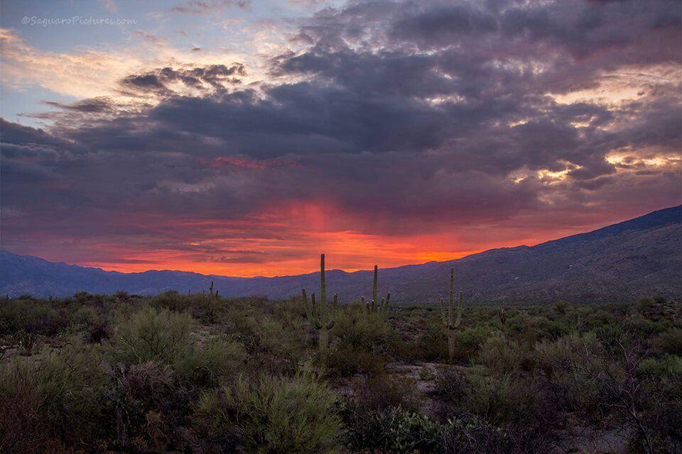 Westward Look Resort In Tucson Az Monsoons Bring Beautiful Sunsets Beautiful Sunset Sunset Tucson Az
