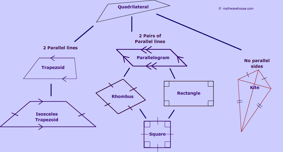 Quadrilateral family tree third grade math pinterest math quadrilateral family tree ccuart Image collections