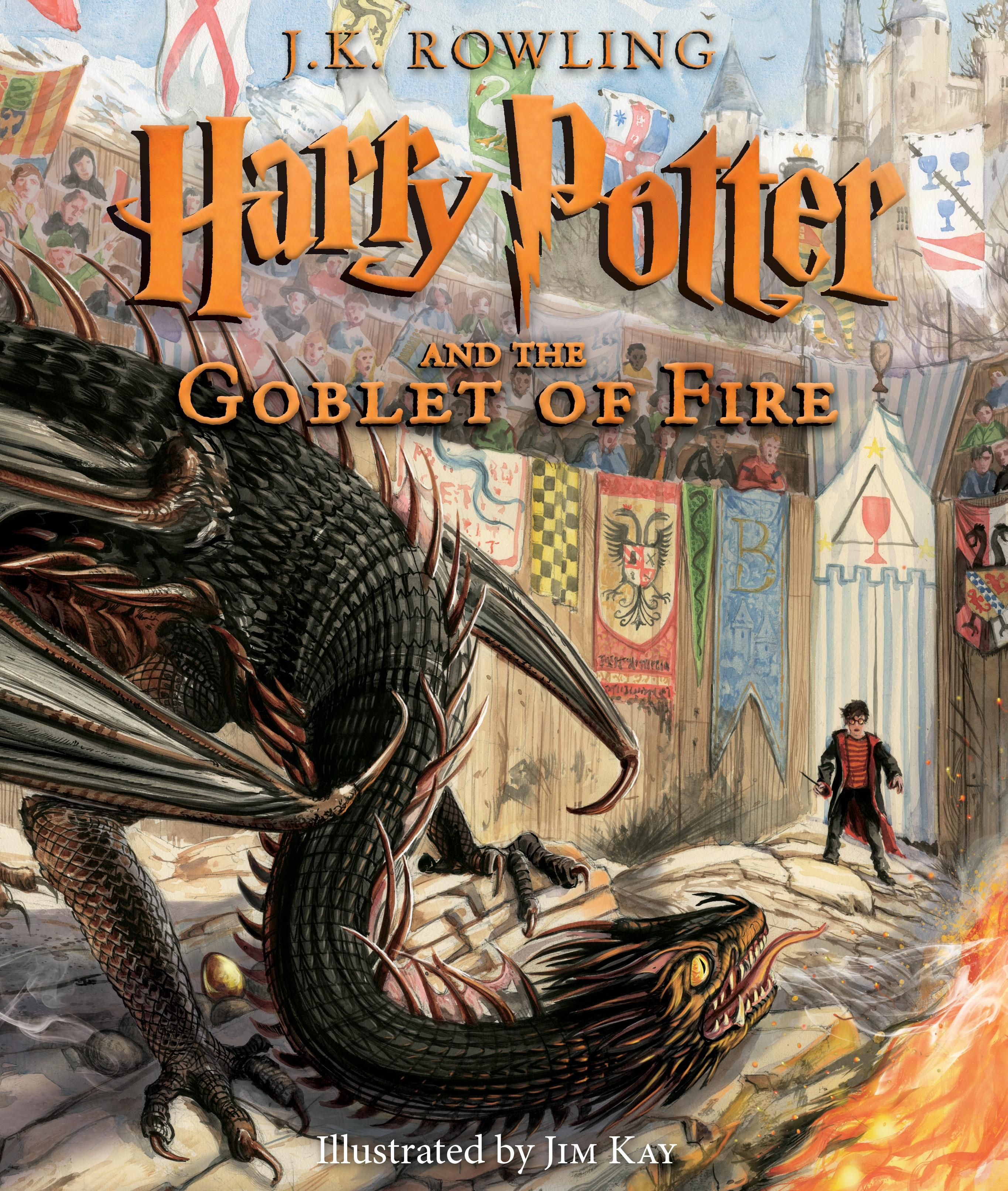 See New Harry Potter 20th Anniversary Book Covers Illustrated By Brian Selznick Harry Potter Book Covers Harry Potter Goblet New Harry Potter Book