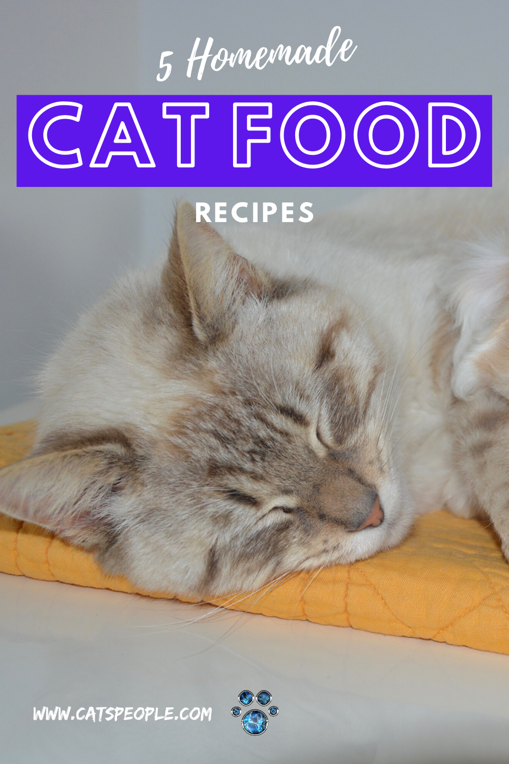 5 Homemade Cat Food Recipes Easy Cheap And Fun To Make In 2020 Homemade Cat Food Healthy Cat Food Cat Parenting