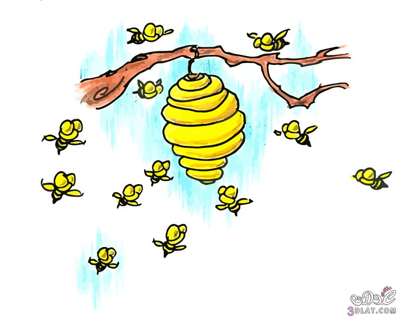 سكرابز نحل للتصميم سكرابز خلية نحل للتصميم اروع واجمل صور النحل الكارتونية للت Sketch Book Free Clip Art Bee Hive