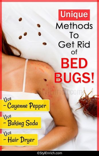 How To Get Rid Of Bed Bugs Let S See Unique Methods Rid Of Bed Bugs Bed Bugs Infestation Bed Bugs