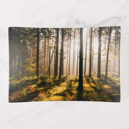 Fall Forest with Sunrays Trinket Trays