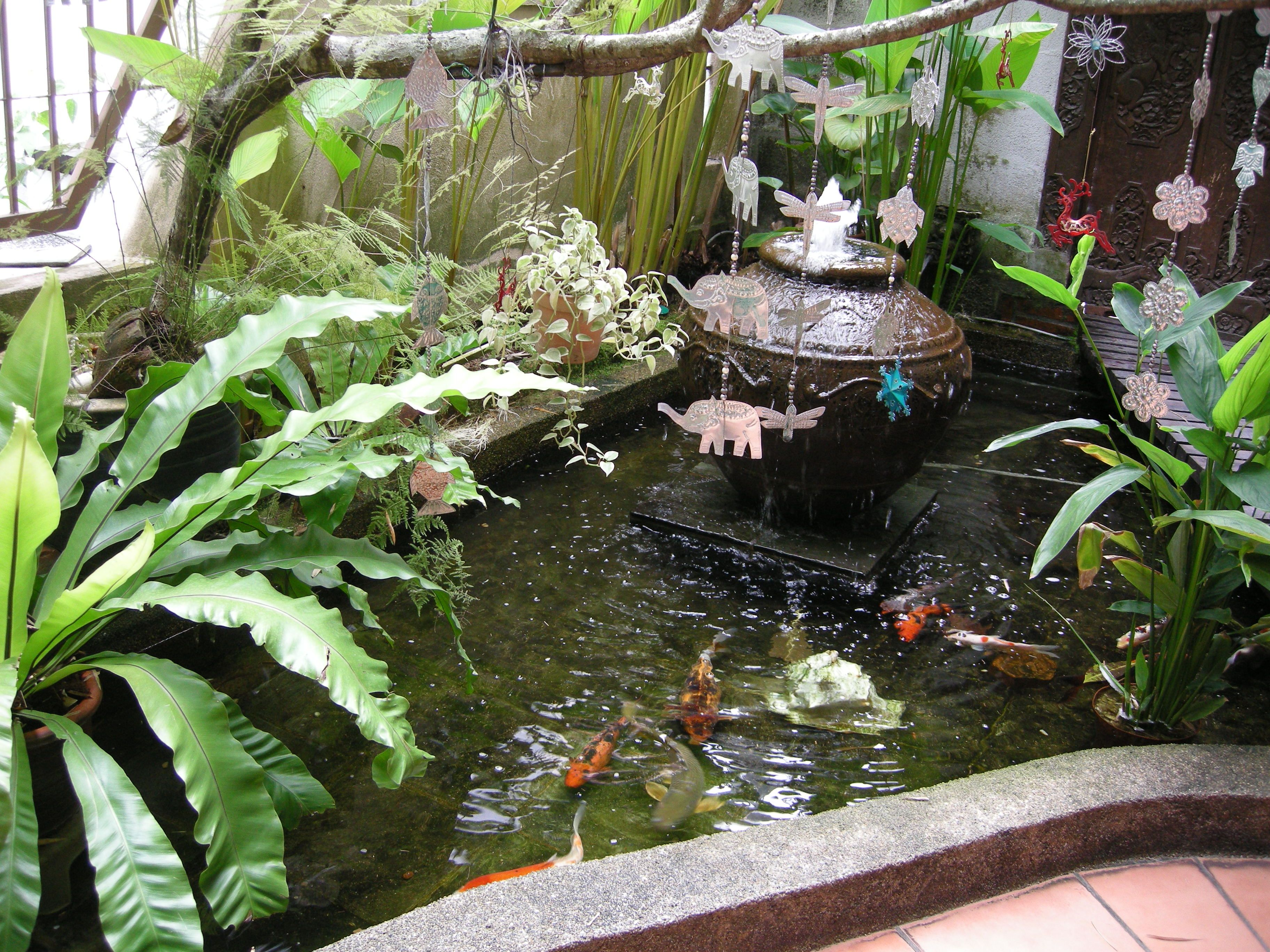 balinese design manmade garden pond with japanese koi