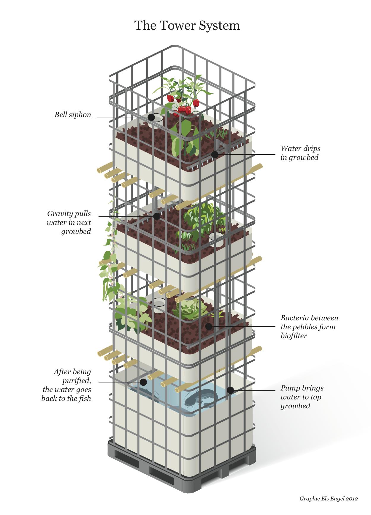 Vielseitig Einsetzbar Ibc Container Pinterest Garten Pflanzen