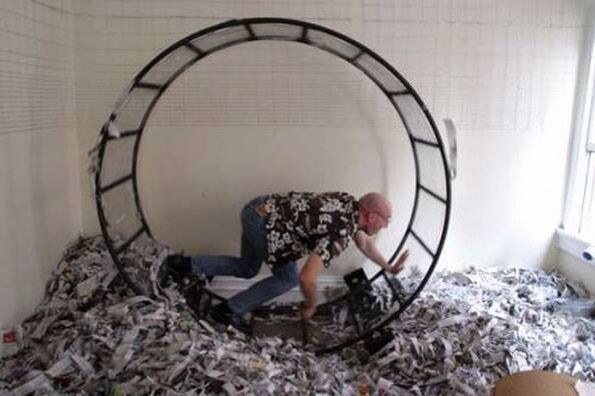 Human Size Hamster Wheel Funny Payday Loans Payday Bad Debt