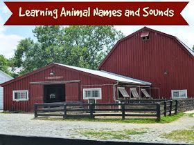 Preemie Blessings: Learning Animal Names and Sounds