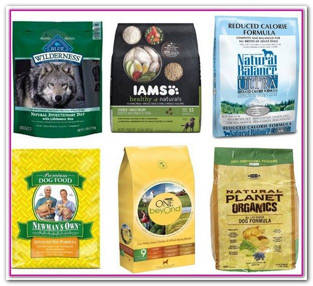Best Cheap Dog Food Reddit Any Recommendations On Good Brands That