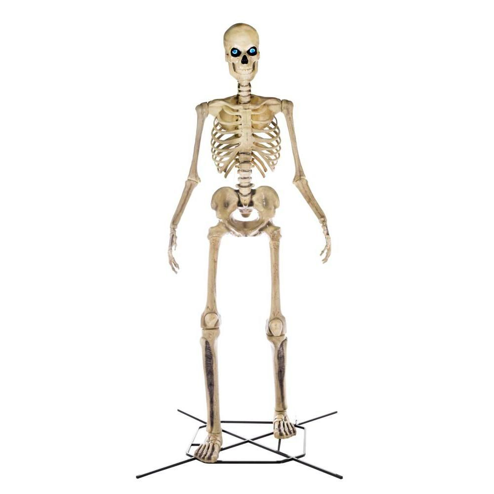 Home Accents Holiday 12 Ft Giant Sized Skeleton With Lifeeyes 5124738 The Home Depot In 2020 Halloween Scene Halloween Skeletons Halloween Party Costumes