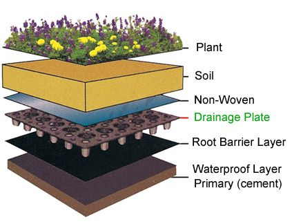 Introduction about drainage plate and application for Garden drainage system