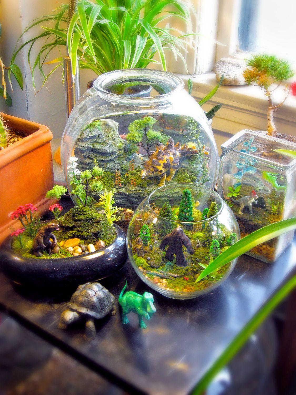 Increibles mundos dentro de terrarios de vidrio - Plantas para terrarios ...