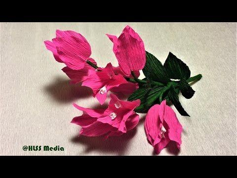 Beautiful bougainillea paper flower making easy and fast diy crepe beautiful bougainillea paper flower making easy and fast diy crepe paper flowers design step by step youtube mightylinksfo
