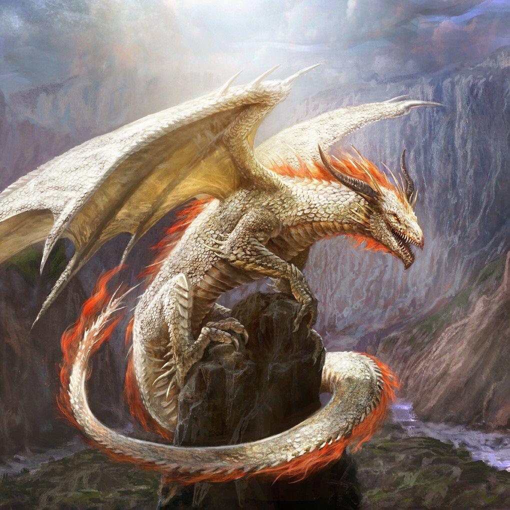 напугать картинки императорского дракона это сырье