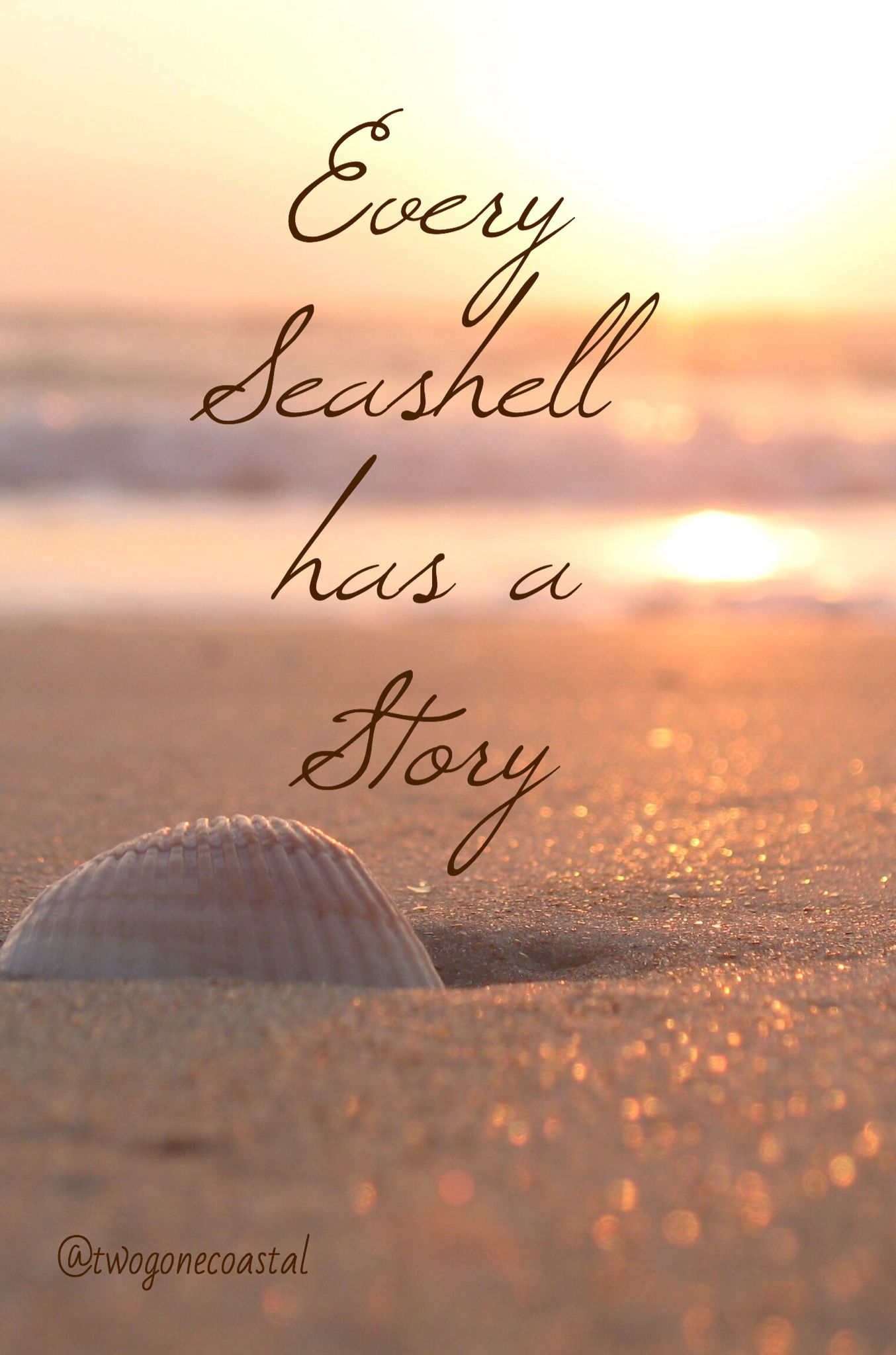 Every Seashell has a Story llect sea shells from every beach Beach Quotes And SayingsBeach