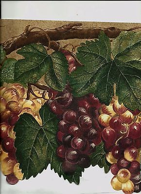 Tuscan Style Grapes On Vines Wallpaper Border Mn5022 Wallpaper Border Victorian Wallpaper Wallpaper
