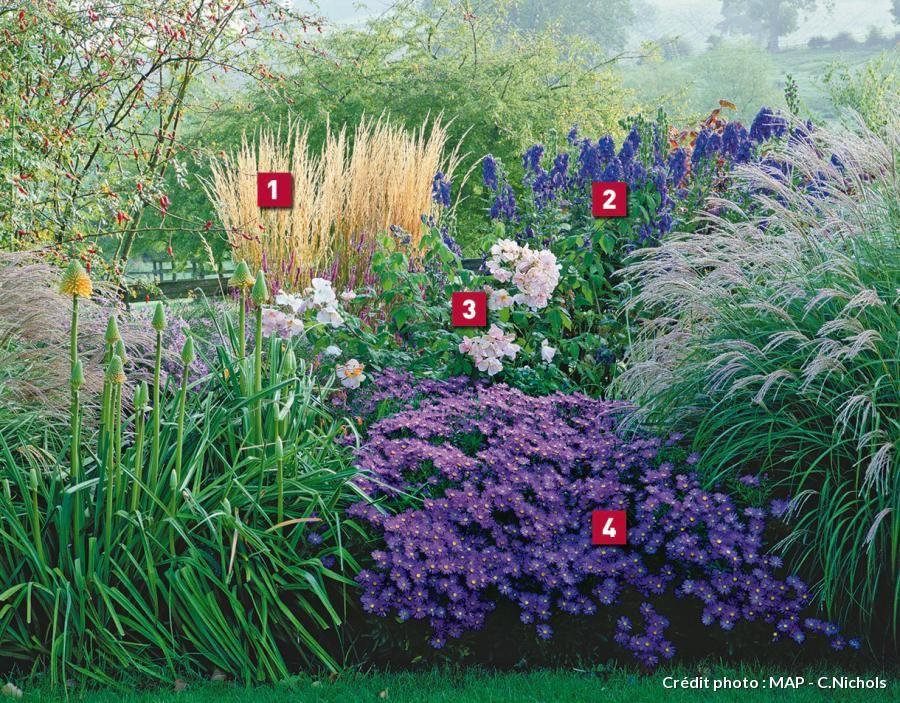 Am nager un massif tout en bleu massif fleurs jardin - Creer un jardin mediterraneen ...