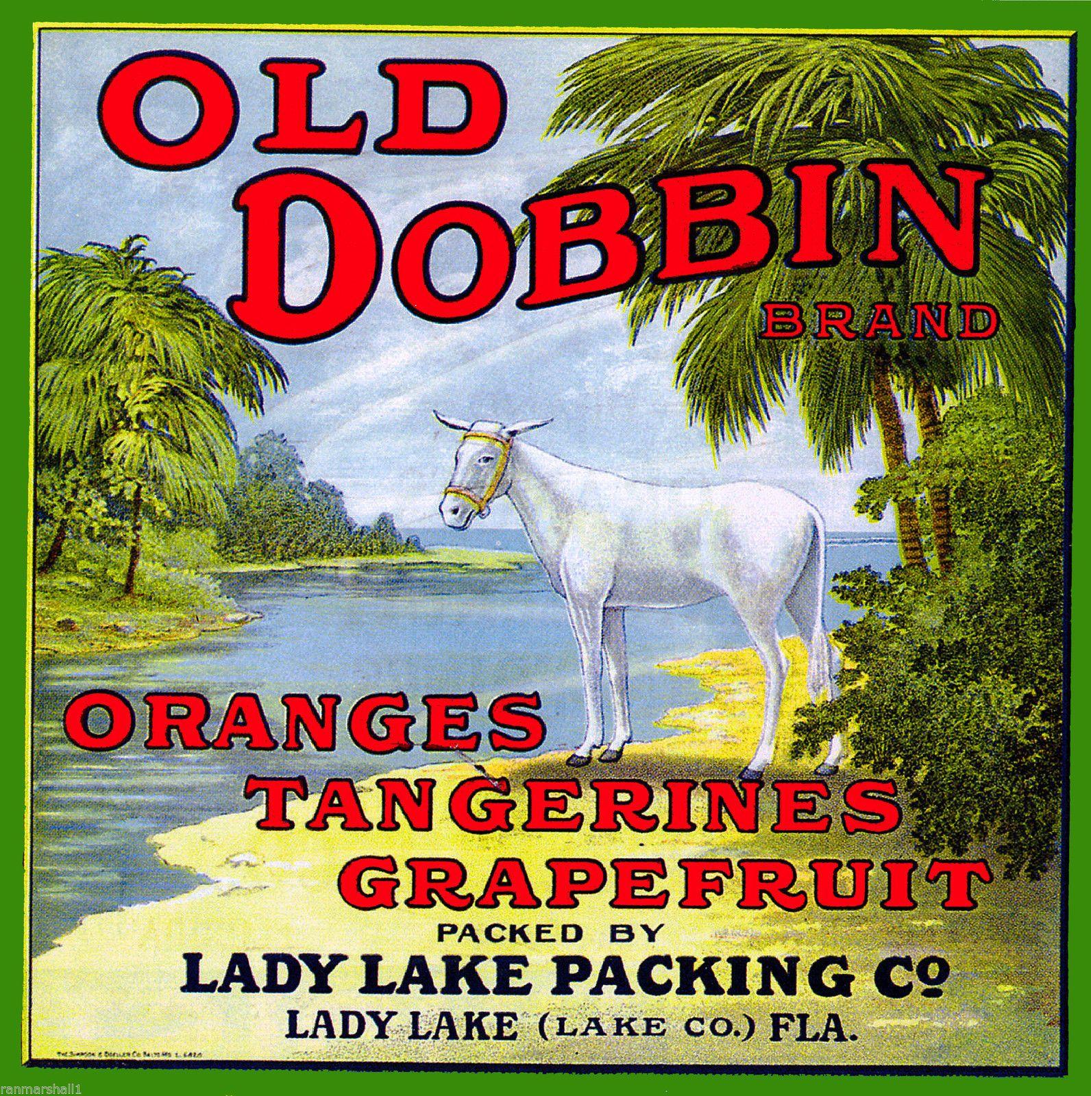 Lady Lake Florida Old Dobbin Donkey Mule Orange Citrus