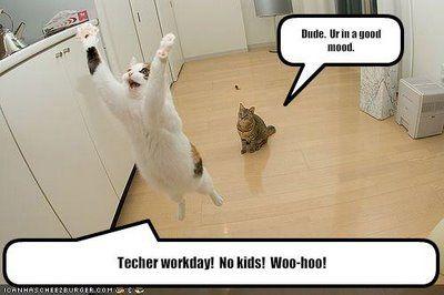 Professional Development Lolcats Teaching Humor Teacher Humor Teaching Memes