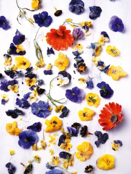 Sweet Tooth : Lily Vanilli  crystallised flowers from Sweet Tooth