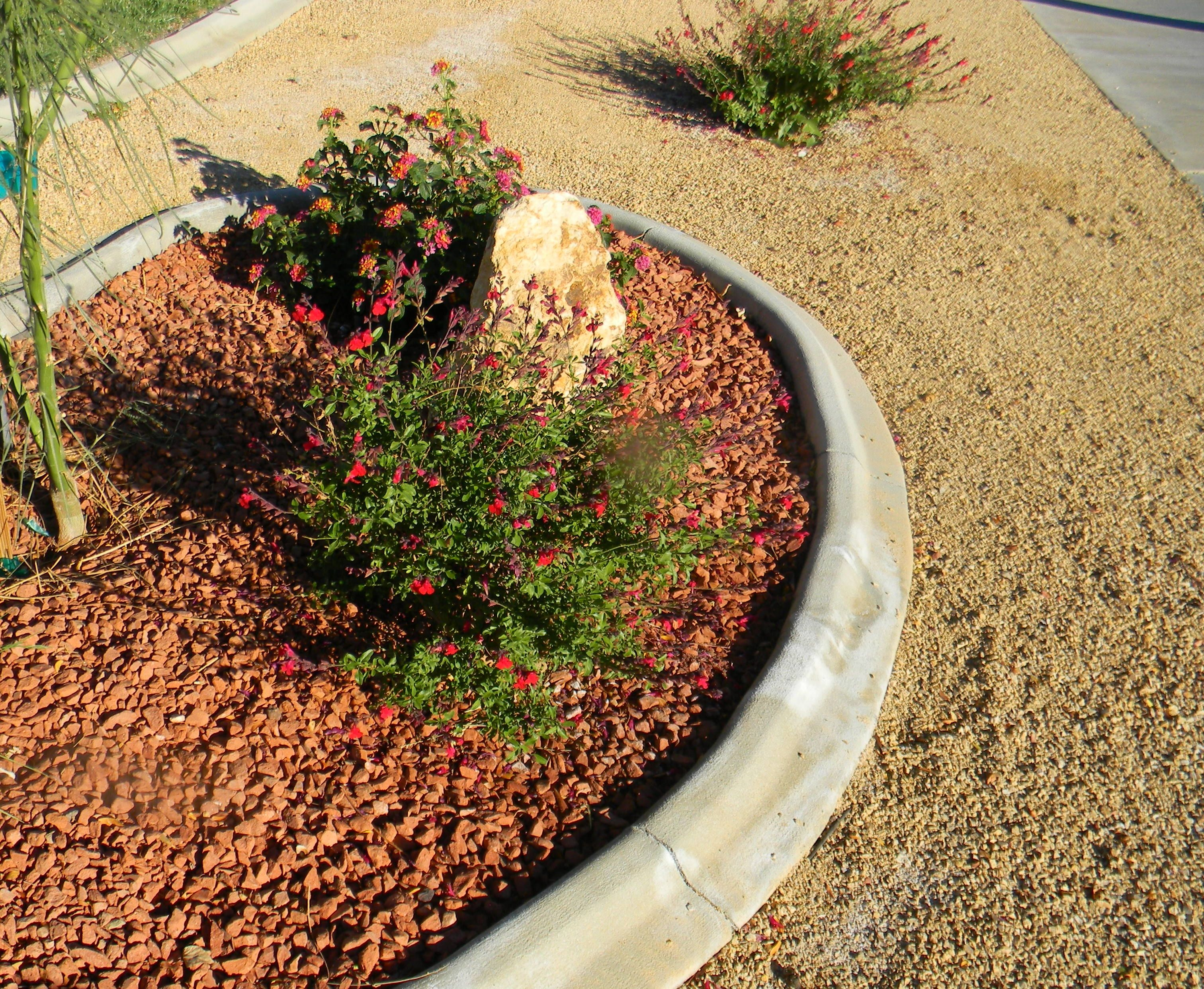 Crushed Granite Mulch : Quot crushed red brick and bark brown d g minus