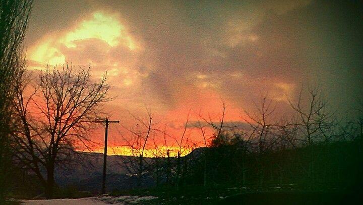 Warm Savannah Skys over the Frozen Tundra of Trees
