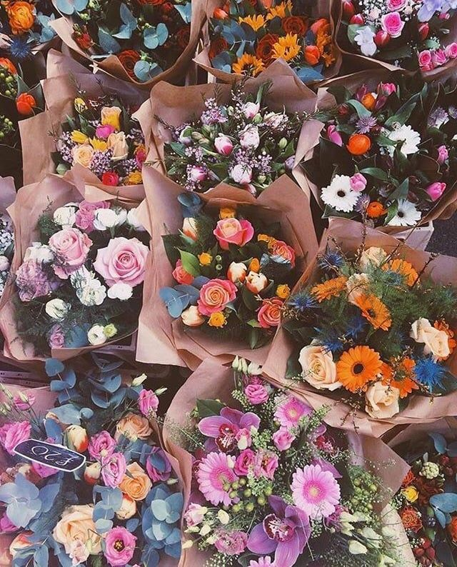 image about flowers in flower by pinkpetty on we heart it herba
