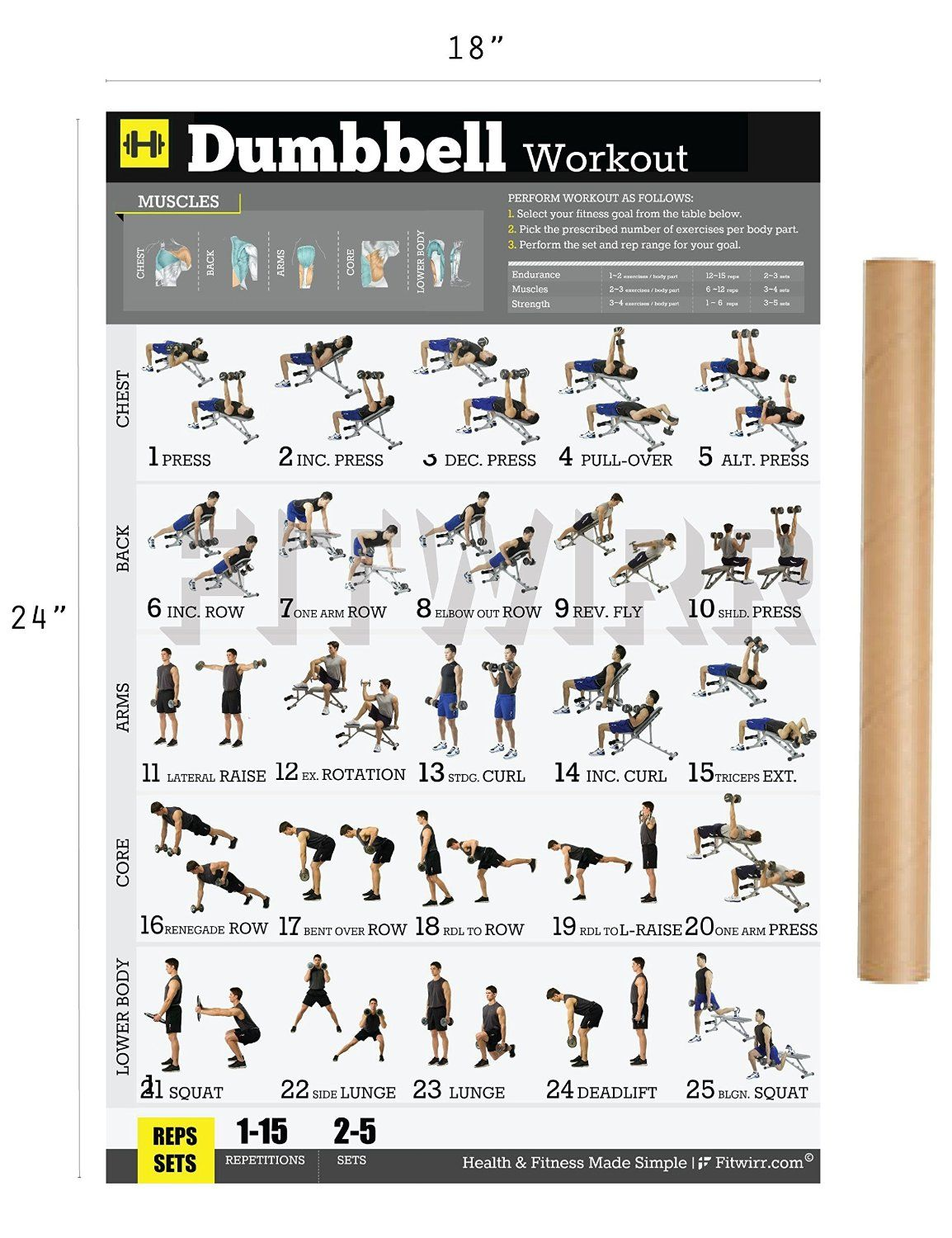 Gym Workout Chart For Chest For Men Fitwirr Dumbbell Workout Poster 19x27 Dumbbell Exercises