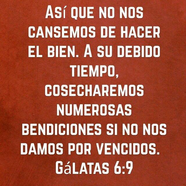 #BuenosDiasATodos #FelizSabado #SabadoDeGanarSeguidoresparaCristo #AlaboaDios #SaludosyBendiciones #SinAmornoSoyNada #Justicia #Dios #intachable ☺        ☺