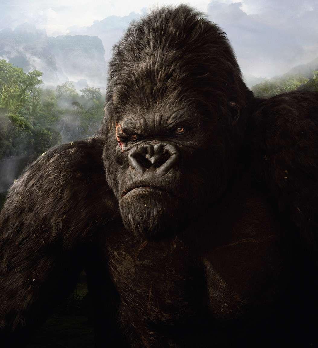 King Kong - Mobil6000