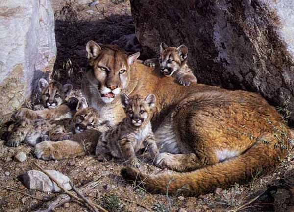 Cougar meets big carl 8