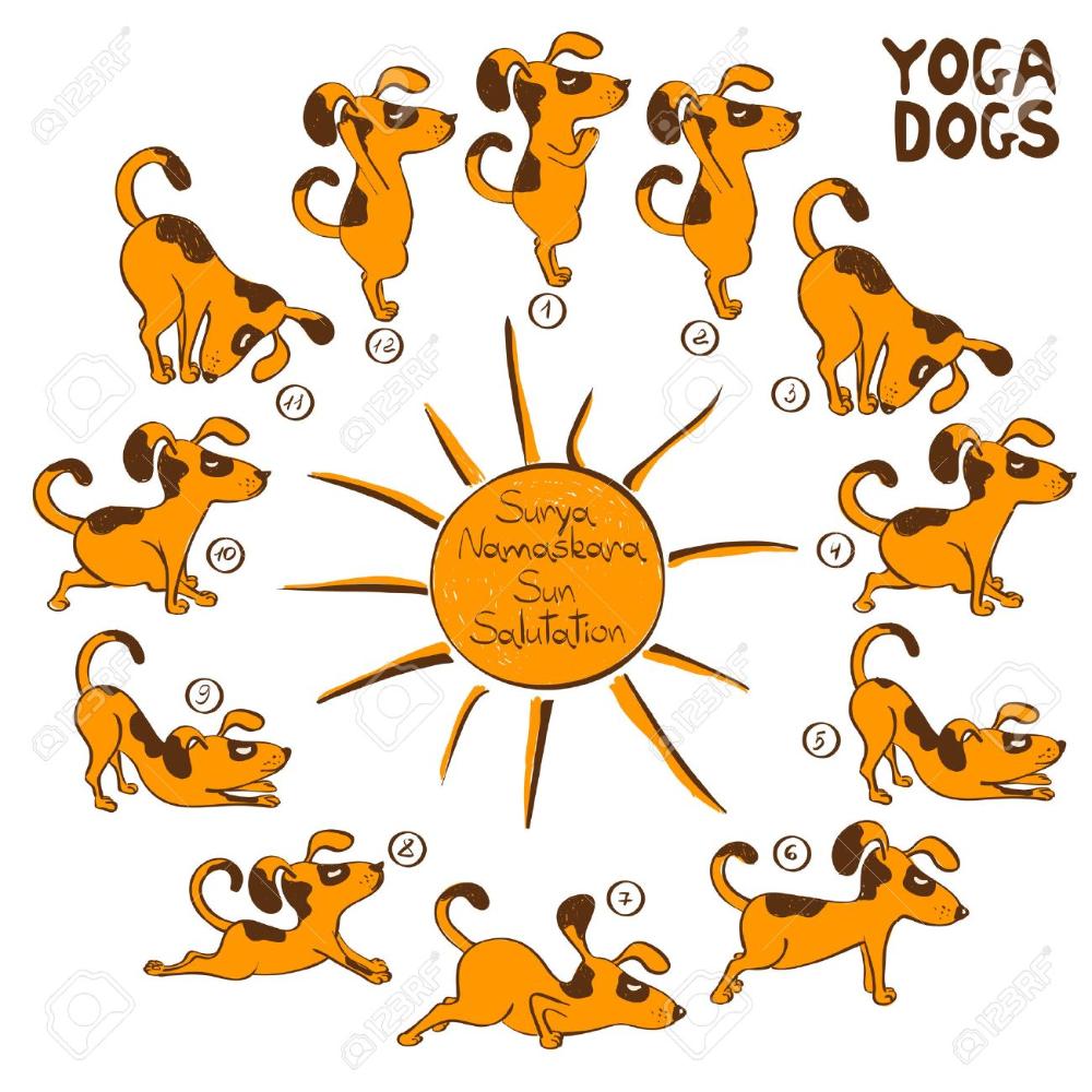 Stock Vector Dog Doing Yoga Dog Yoga Funny Cartoons