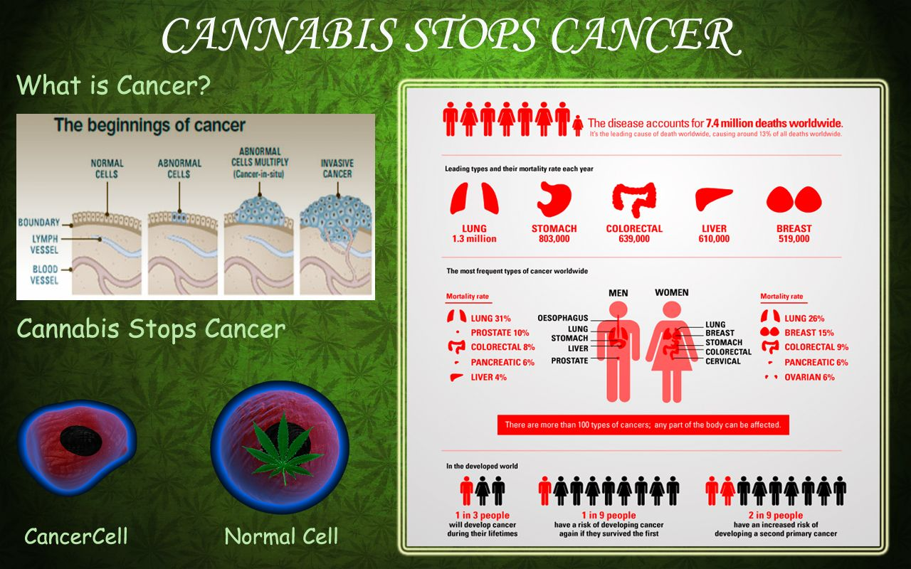Cancer herbal treatment statistics - Cannabis Cures Cancer