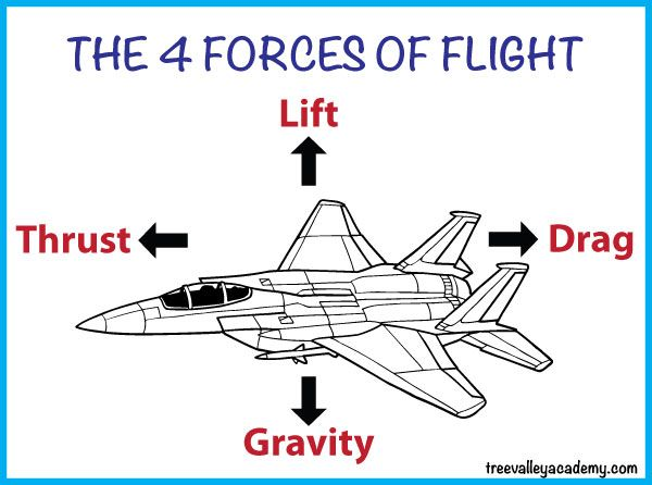 Paper Airplane Diagram Of Parts Well Pump Learning About Flight With Airplanes   Science Experiments Pinterest ...