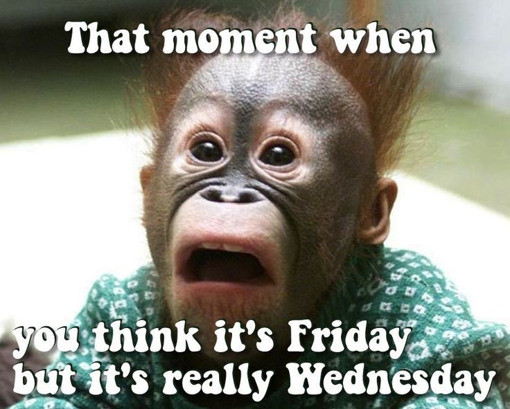 Funny Meme Wednesday : That moment when you think it s friday but really
