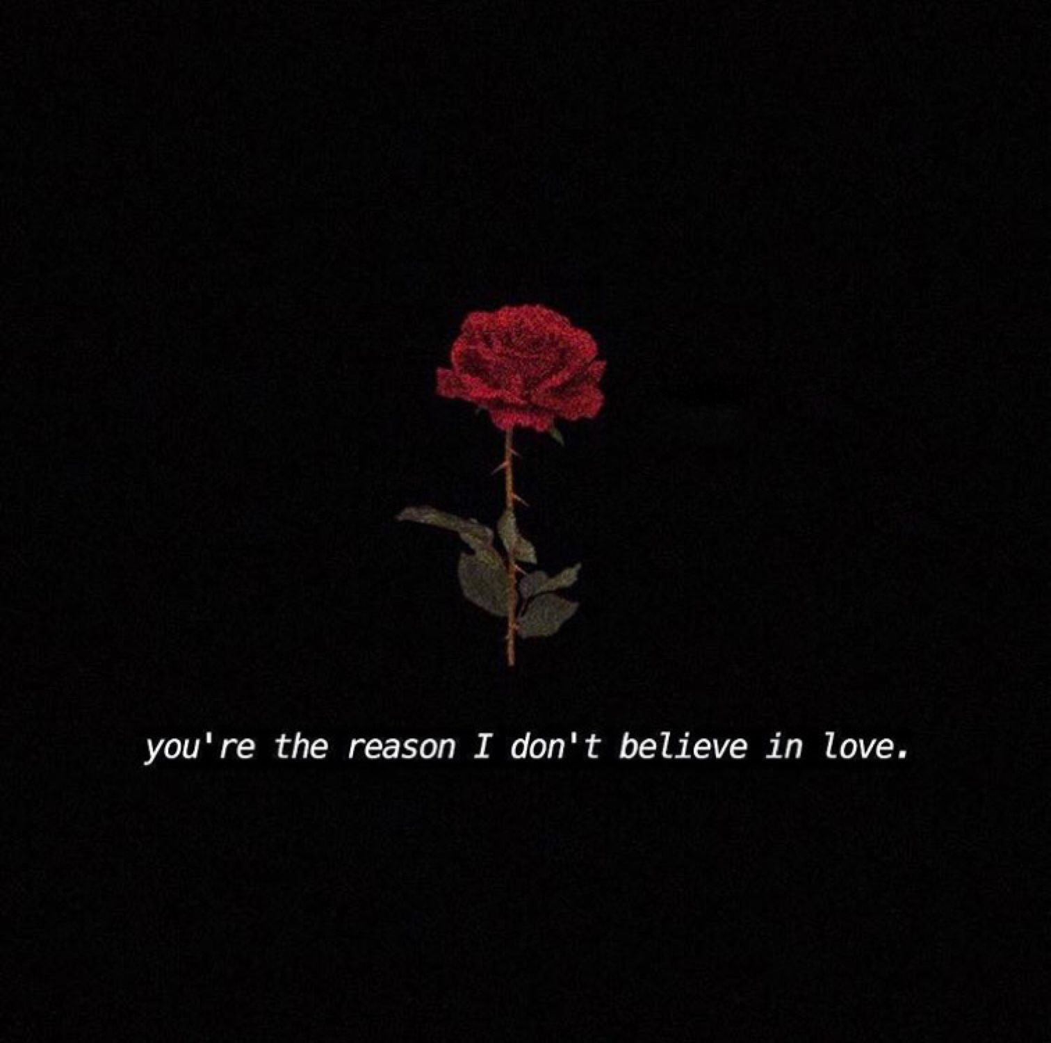 And they ask me why I don't believe in Love..