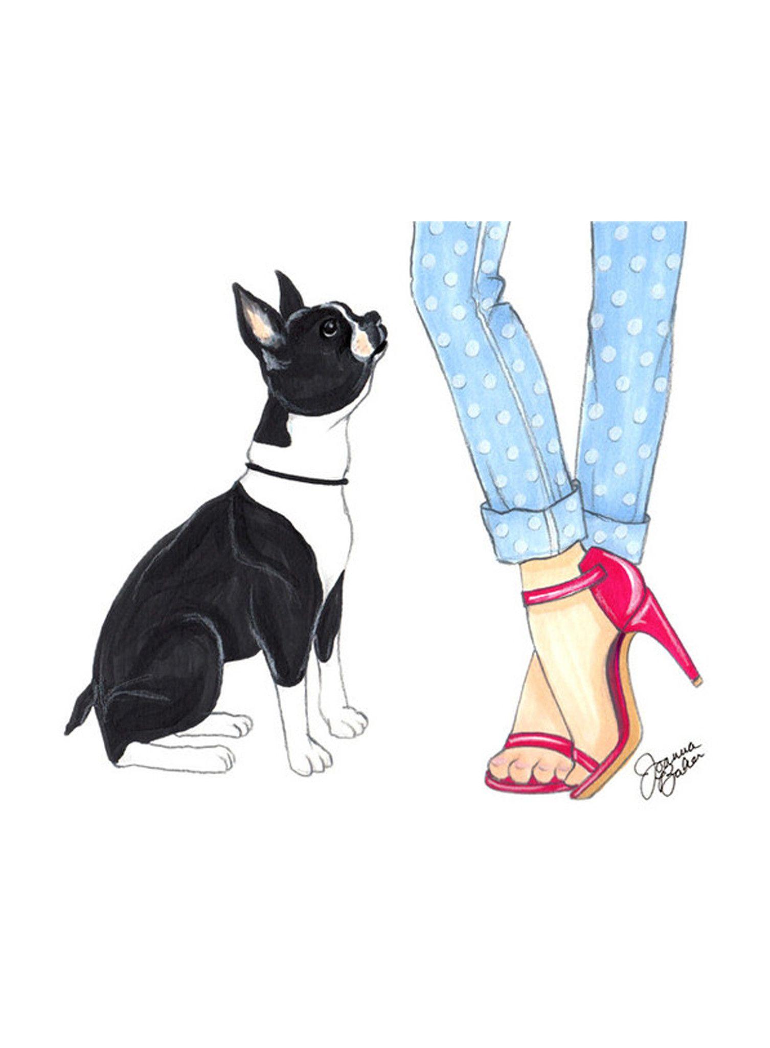 Pink Boston Terrier Boston Terrier Art Boston Terrier Illustration Boston Art
