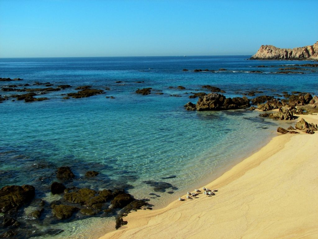 Book Your Tickets Online For Chileno Beach Cabo San Lucas See 2 169 Reviews Articles And 511 Photos Of Chil Travel Cabo San Lucas Cabo San Lucas Cabo Trips