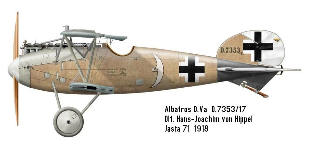 Albatros D.Va - Pilot - Oblt. Hans-Joachim von Hippel. August 1918. According to other sources, von Hippel's D.7353/17 was sporting Jasta 71 red and white s...