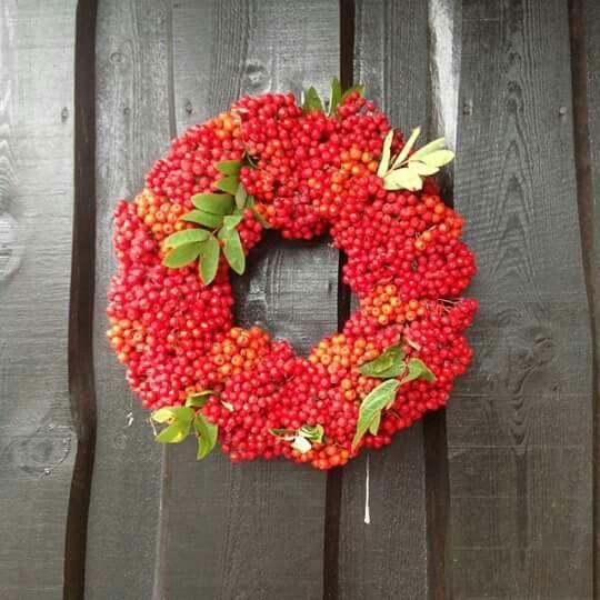 Krans av rognebær