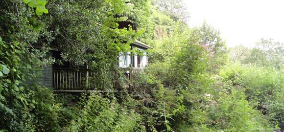 Cedar Falls – Wye Valley, Monmouthshire. A simple cabin at the bottom of the garden offering peace, rural seclusion and beer.
