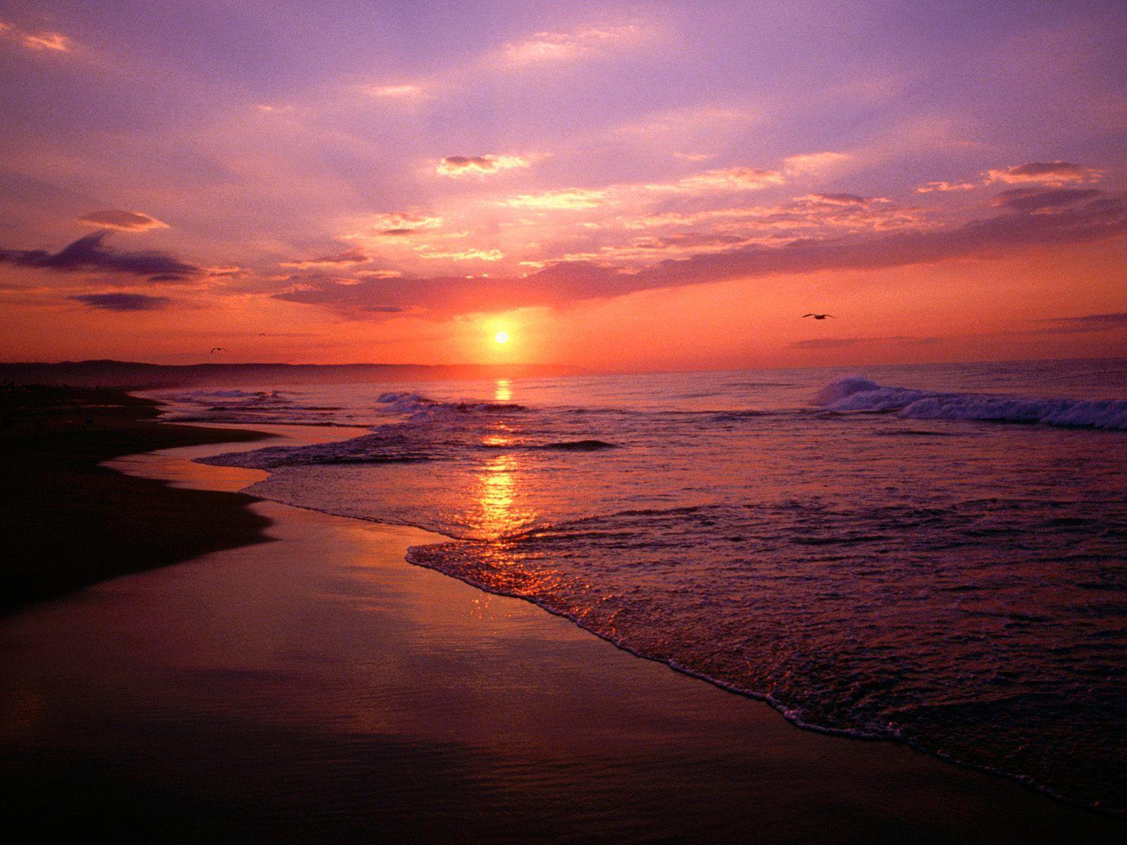 Newport Beach California Behind The Scenes Virtual Coo Sunrise Beach Beach Wallpaper Sunset Wallpaper