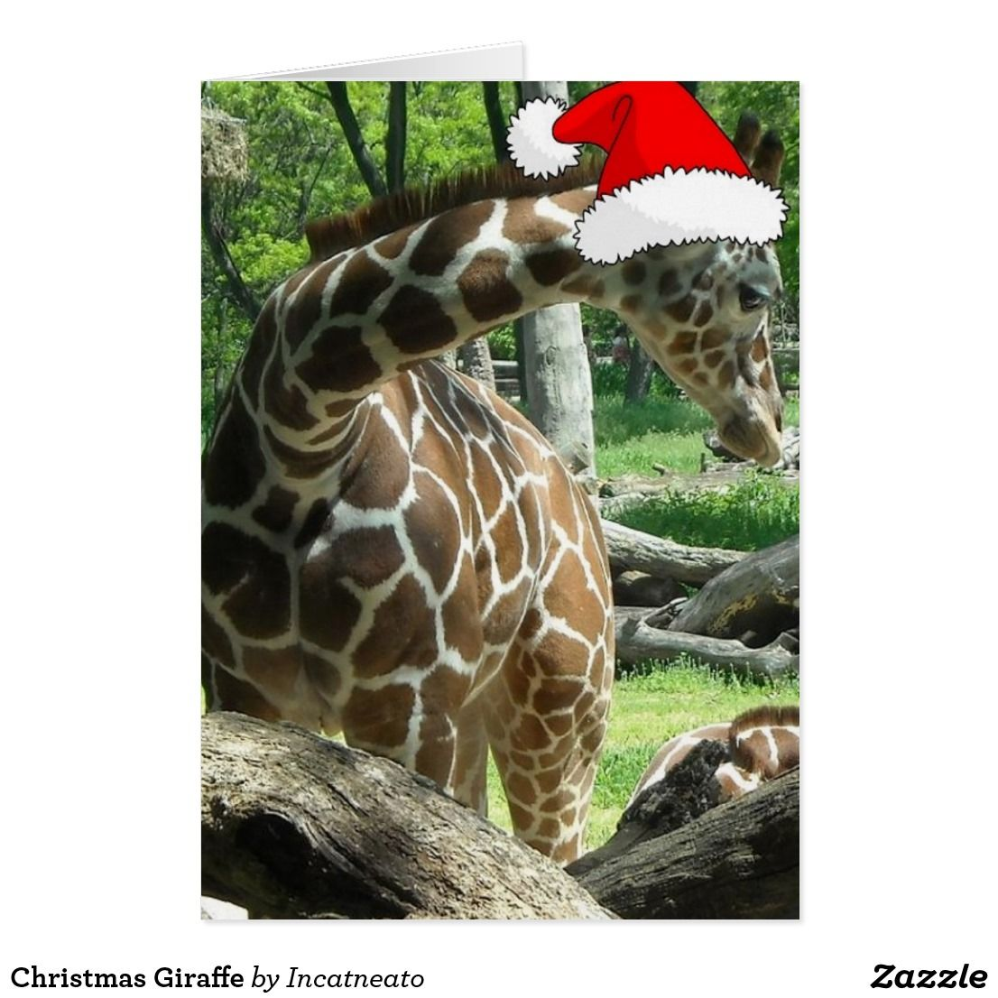 Christmas giraffe holiday card holiday