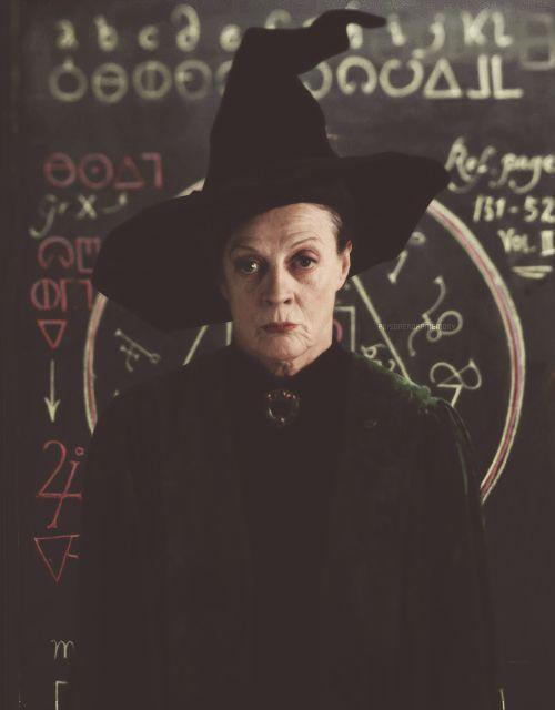 Minerva Mcgonogall Harry Potter Universal Harry Potter World Harry Potter Obsession