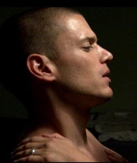 Join Wentworth miller naked images consider