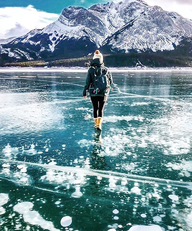 i stand on the sacrifices of a million women before me thinking what can i do to make this mountain taller so the women after me can see farther legacy  #happyiwd2018 Celebrate being a strong independent kind beautiful vivacious woman today! Enjoy 25% OFF the site til midnight tonight! Apply code HEARUSROAR     @ellenmccardle via @albertaadventuregirls feat. @linhyrdskynyrd      #ponytailsandmountaintrails#LBDtrailblazer #ponytailposse…
