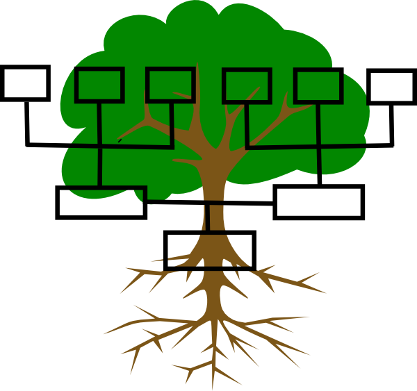 what does a family tree look like